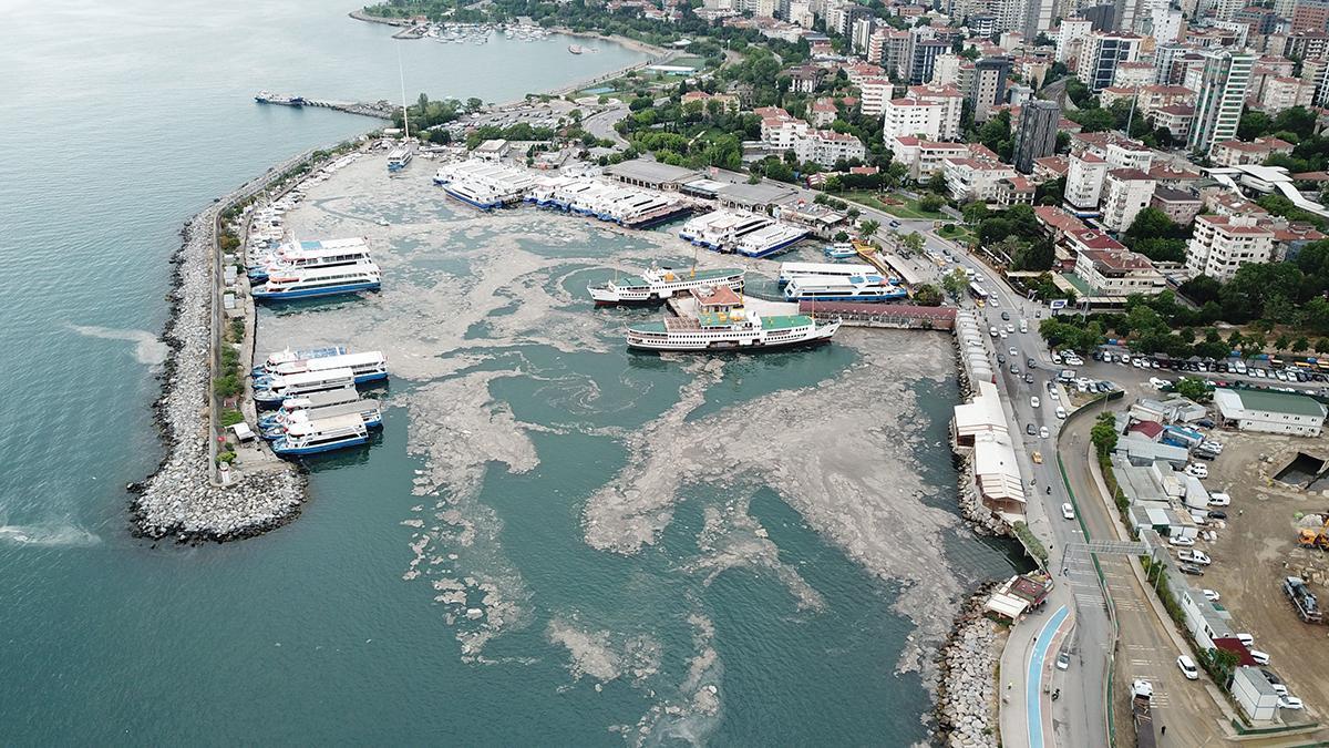 İstanbul Bostancı sahilinde müsilaj havadan görüntülendi