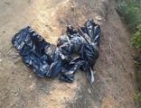 Ormana atılmış çöp poşetinde ölü köpek bulundu
