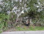 Esenyurt'ta ağaçlık alanda erkek cesedi bulundu
