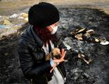Kulübeleri yakılan 9 yavru köpek ölü bulundu