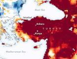 Türkiye için bir uyarı da WWF'den