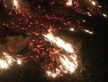 Ordu'da korkutan yangın! Mahalleli söndürdü