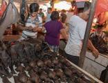 DSÖ Vuhan'da salgının çıktığı gıda pazarını inceledi