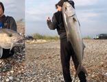 Kıyıdan oltayla 42 kiloluk balık yakaladı