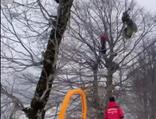 Atlayıştan sonra kapanan paraşütü ile ağacın üzerine düştü