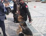 Polis köpeği, Yerlikaya'ya hamle yaptı, gülüşmeler yaşandı