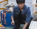 DSÖ'den kritik çağrı: Canlı hayvan pazarlarını kapatın!