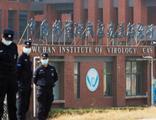 Çin'de 3 araştırmacı salgından önce Kovid-19 olmuş!