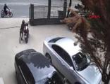 Çalıntı motosikletle başka bir motosiklet daha çaldılar