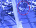 Beşiktaş'ta 3 Rus kadına dehşeti yaşatmıştı