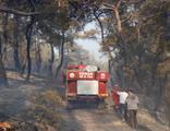 Seydikemer'deki orman yangını kontrol altında