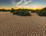 İklim değişikliğini kişisel tehdit olarak görenler arttı