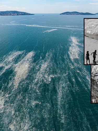 Müsilaj kabusu yaşayan Marmara Denizi ne zaman eski haline dönebilir?