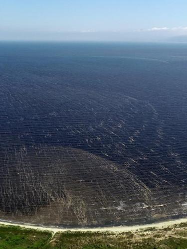 Bandırma sahili simsiyah: Burada denize girmek intihar  gibi