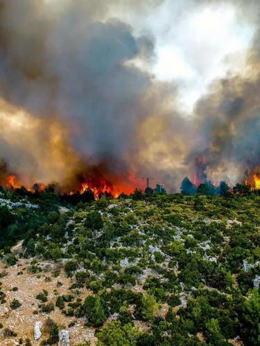 Greenpeace yanan alanların uydu görüntüsünü paylaştı: Çok vaktimiz yok