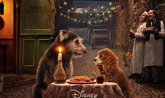 """Lady and the Tramp""tan ikinci fragman"