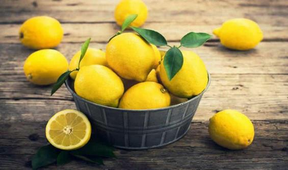 "Limon ihracatına ""koronavirüs"" ayarı"