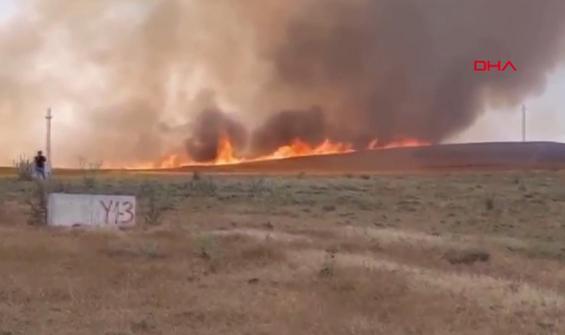 Yangında 700 dönüm ekili arazi zarar gördü