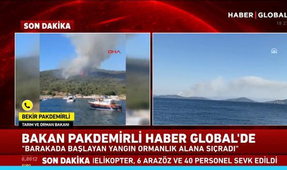 Bakan Pakdemirli'den yangına ilişkin açıklama