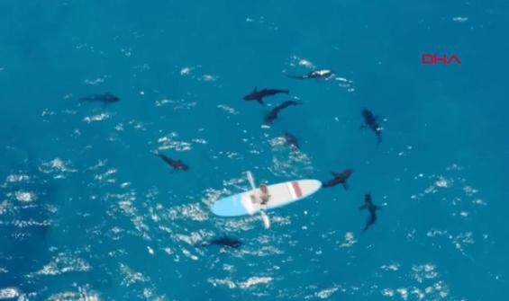 Youtuber'dan Bermuda Adaları'nda tehlikeli deney