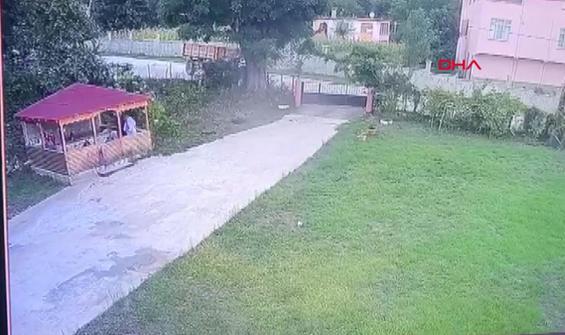 Arının yol açtığı kaza kamerada
