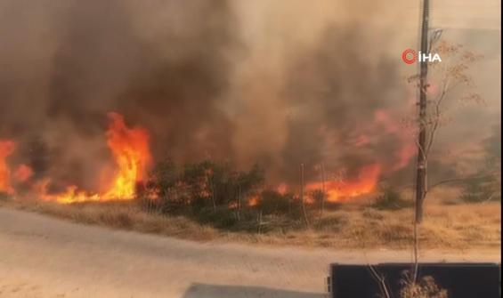 Araçtan atılan izmarit yangına neden oldu