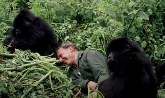 David Attenborough'nun hayatı belgesel oldu