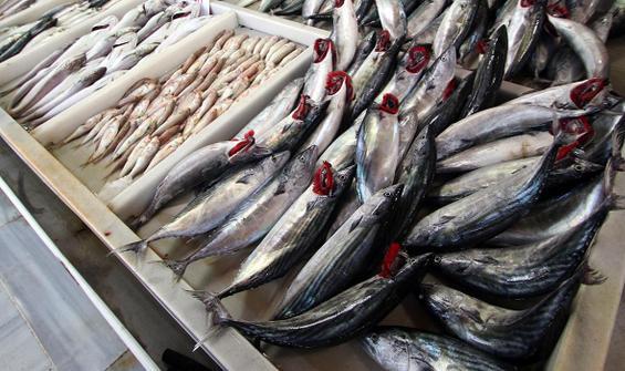 Balık sezonu açıldı, kılçık batması şikayetleri arttı!