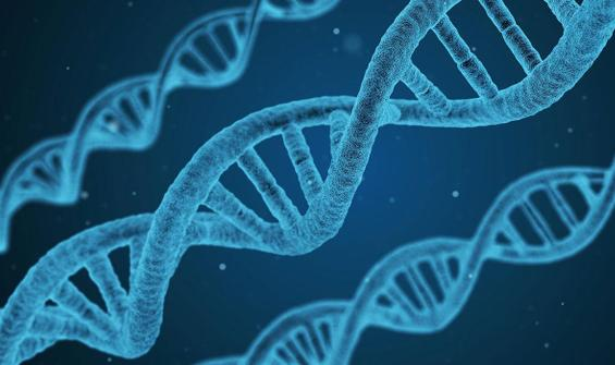 Araştırma: Ağır koronavirüs vakalarından sorumlu olabilir!