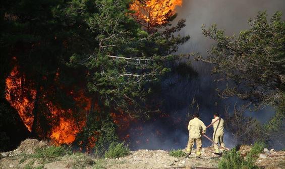 Hatay'daki yangınla ilgili 2 tutuklama