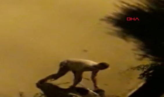 Köpeklere sopayla saldıran şahıs kamerada