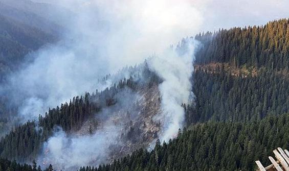 Örümcek Ormanları'ndaki yangın kontrol altına alındı