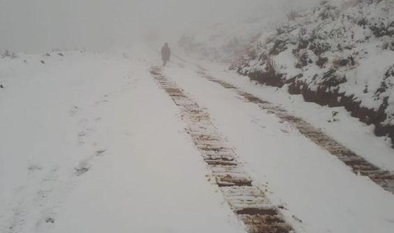 Manisa'da mevsimin ilk karı!
