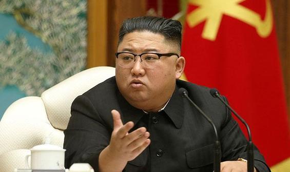Kim Jong Un'un yeğenini CIA mi koruyor?