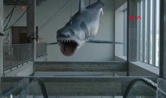 'Jaws' bu defa müzede görüntülendi
