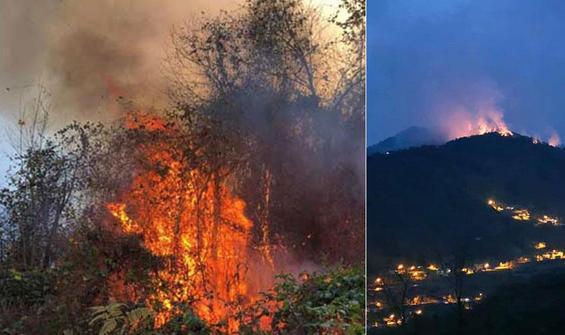 Doğu Karadeniz'de 4 ilde, 23 noktada yangın!