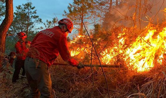 4 ilde 23 farklı noktada çıkan yangınlar söndürüldü