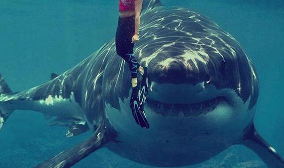 İnsan yüzlü köpek balığı görenleri şoke etti!