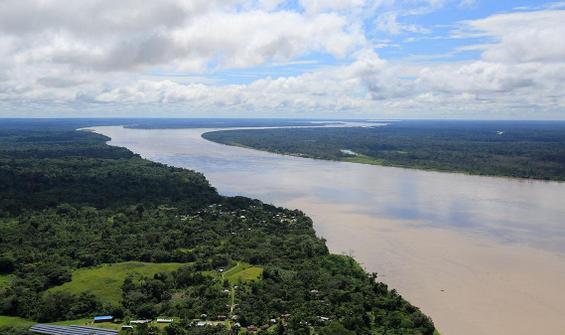 Facebook'ta satılık Amazon ormanı skandalı!