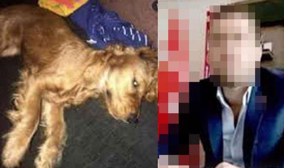 Köpeğe cinsel istismar iddiasına iddianame