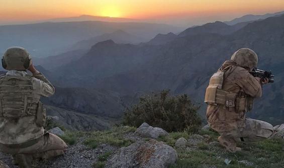 Domuz Dağı'nda 10 terörist daha etkisiz hale getirildi