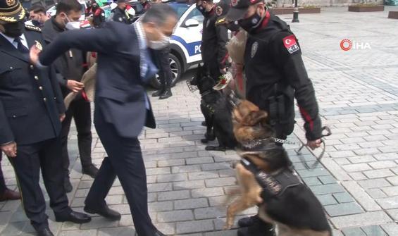 Polis köpeği, Vali Yerlikaya'ya hamle yaptı, gülüşmeler yaşandı