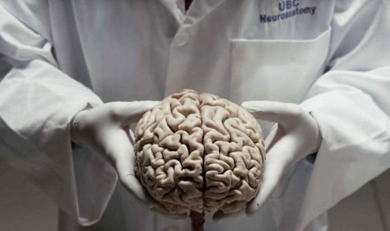 Yaşanılan çevre insan beynini etkileyebilir
