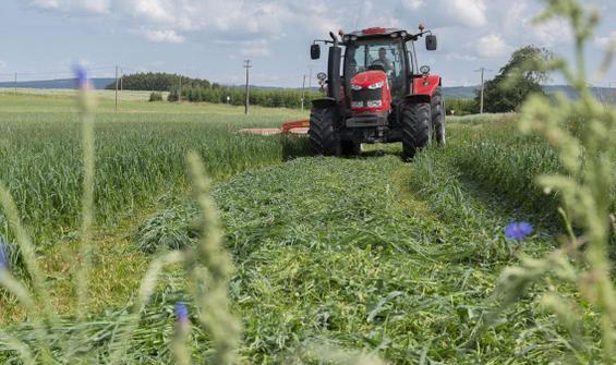Belçikalı çiftçi yanlışlıkla ülkesinin sınırını değiştirdi