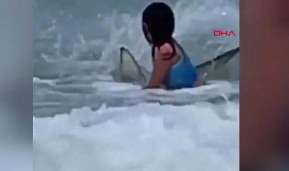 Kıyıya kadar gelen köpek balığından böyle kurtuldu