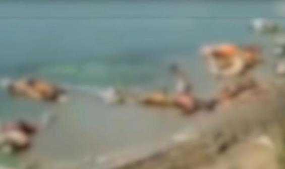 Korkunç! 71 ceset kıyıya vurdu