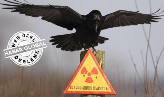 Çernobil'de neler oluyor? 305/2'deki sızıntı...