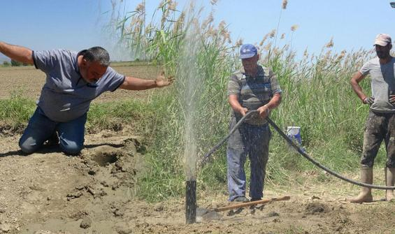 Çiftçinin umudu yeraltında: Aşırı talep var, yetişemiyoruz