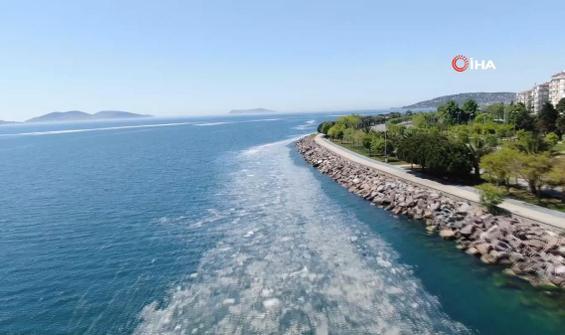 Deniz salyası sahilleri ele geçirmeye devam ediyor
