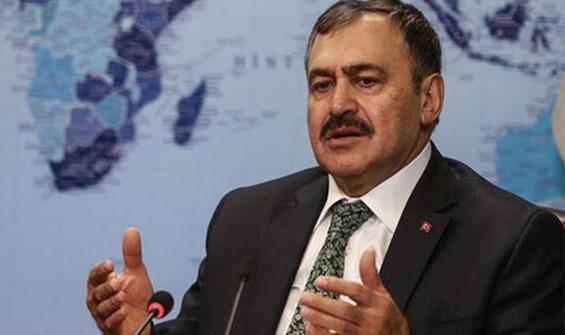 AK Parti'li Eroğlu: Yine bu şekilde kaybedecekler